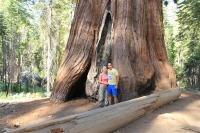 2012.08 Yosemite National Park